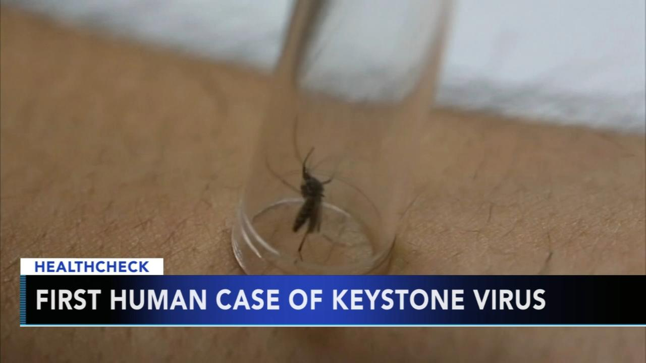 First human case of Keystone virus discovered in Florida