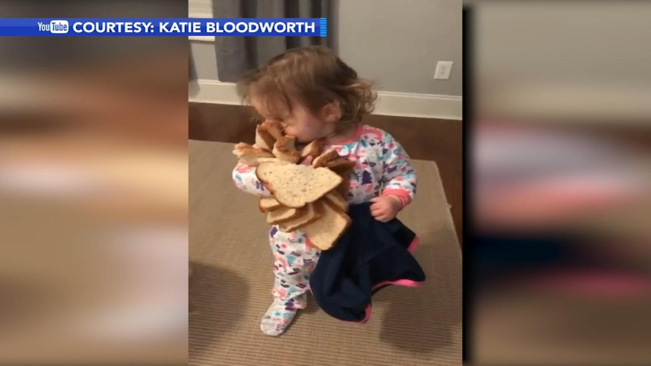 Viral video shows toddler quite literally embracing carbs