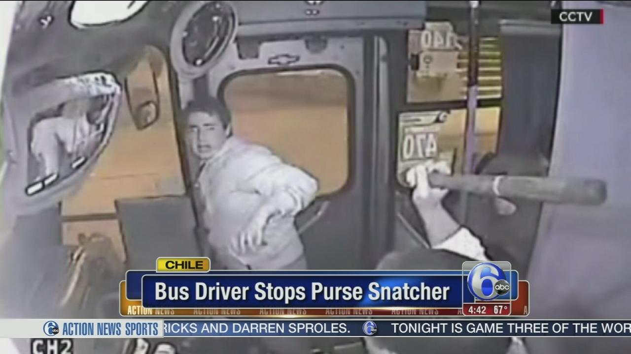 VIDEO: Bus driver stops purse snatcher