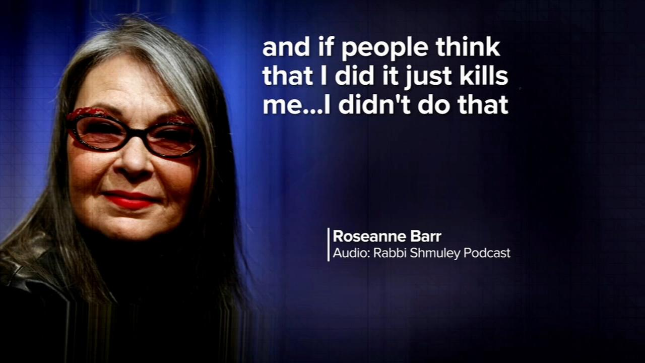 Roseanne Barr gives emotional interview