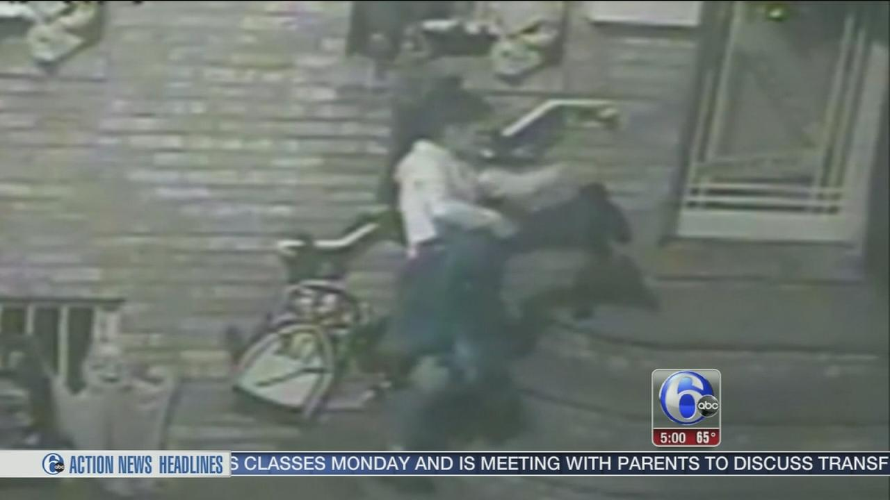 VIDEO: Halloween decor stolen from South Philly home