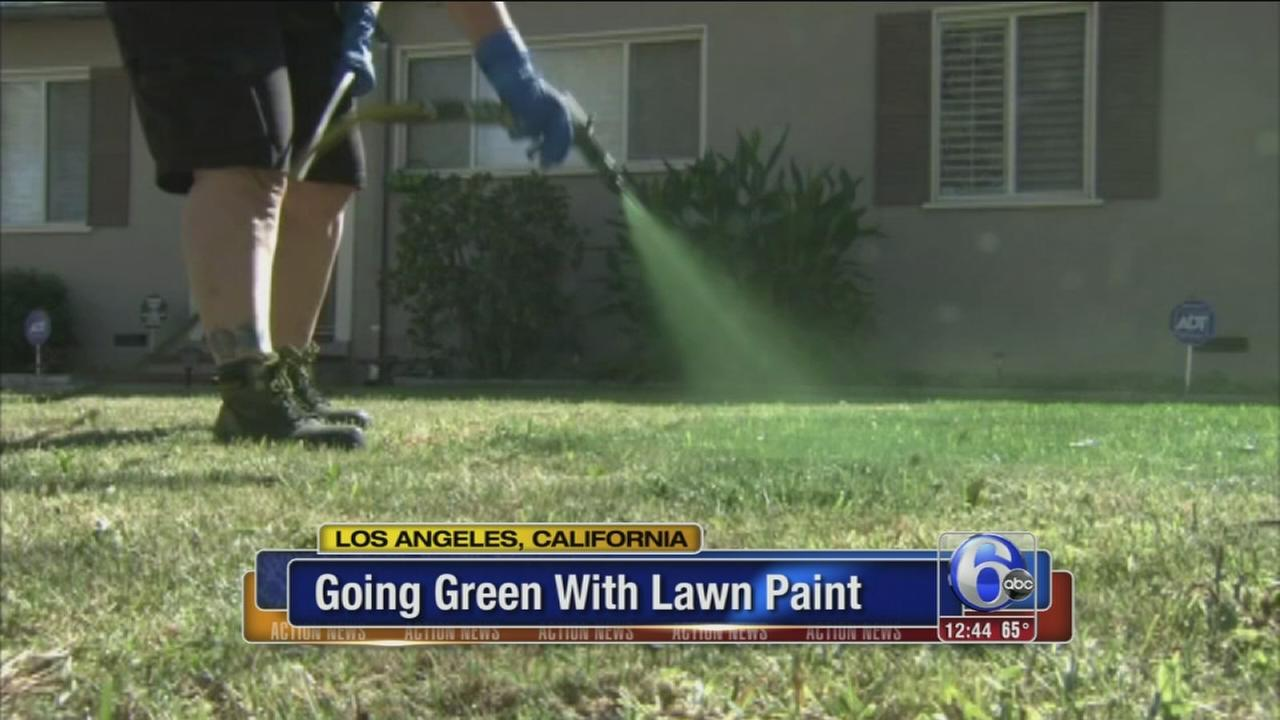 VIDEO: Going green with lawn paint