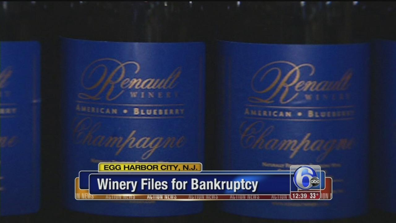 VIDEO: NJ winery files for bankruptcy