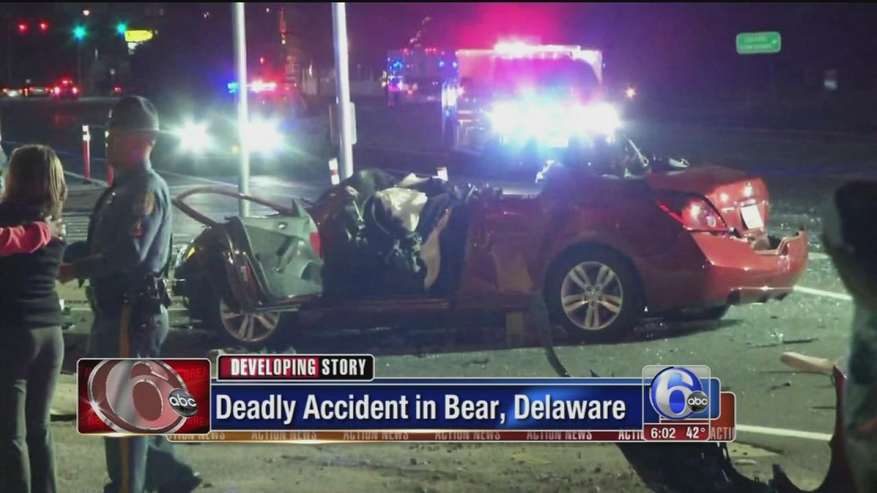 VIDEO: Bear accident