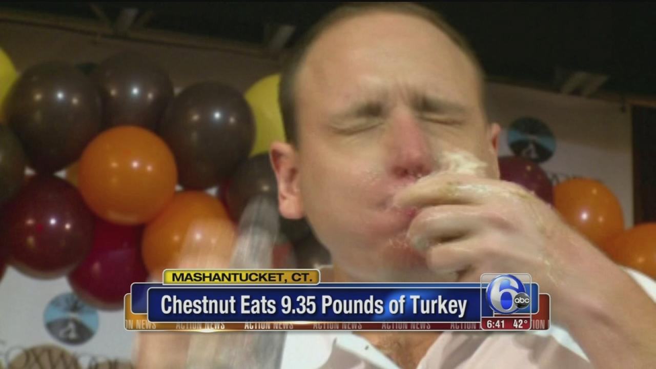 VIDEO: Chestnut eats Turkey