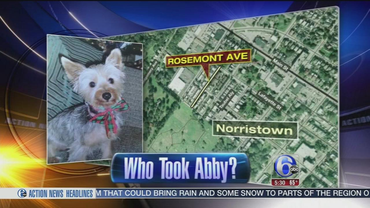 VIDEO: Who took Abby?