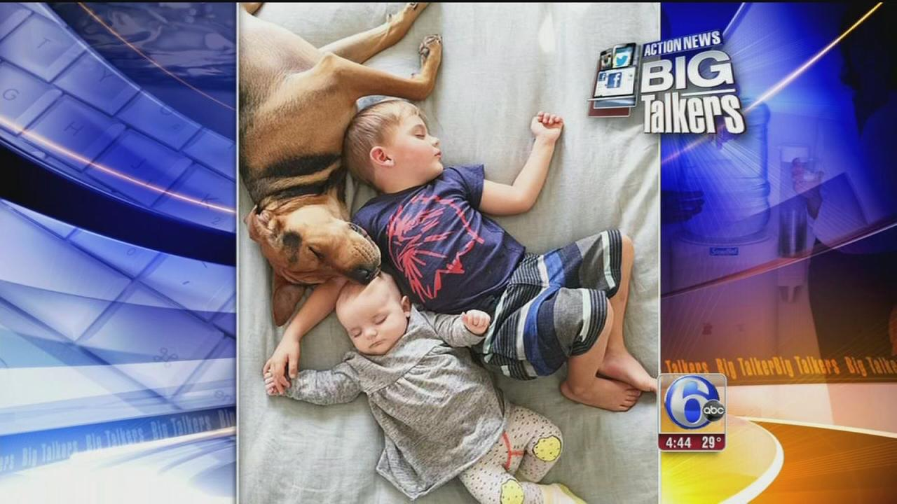 VIDEO: Napping family adds new member to cuddly photos