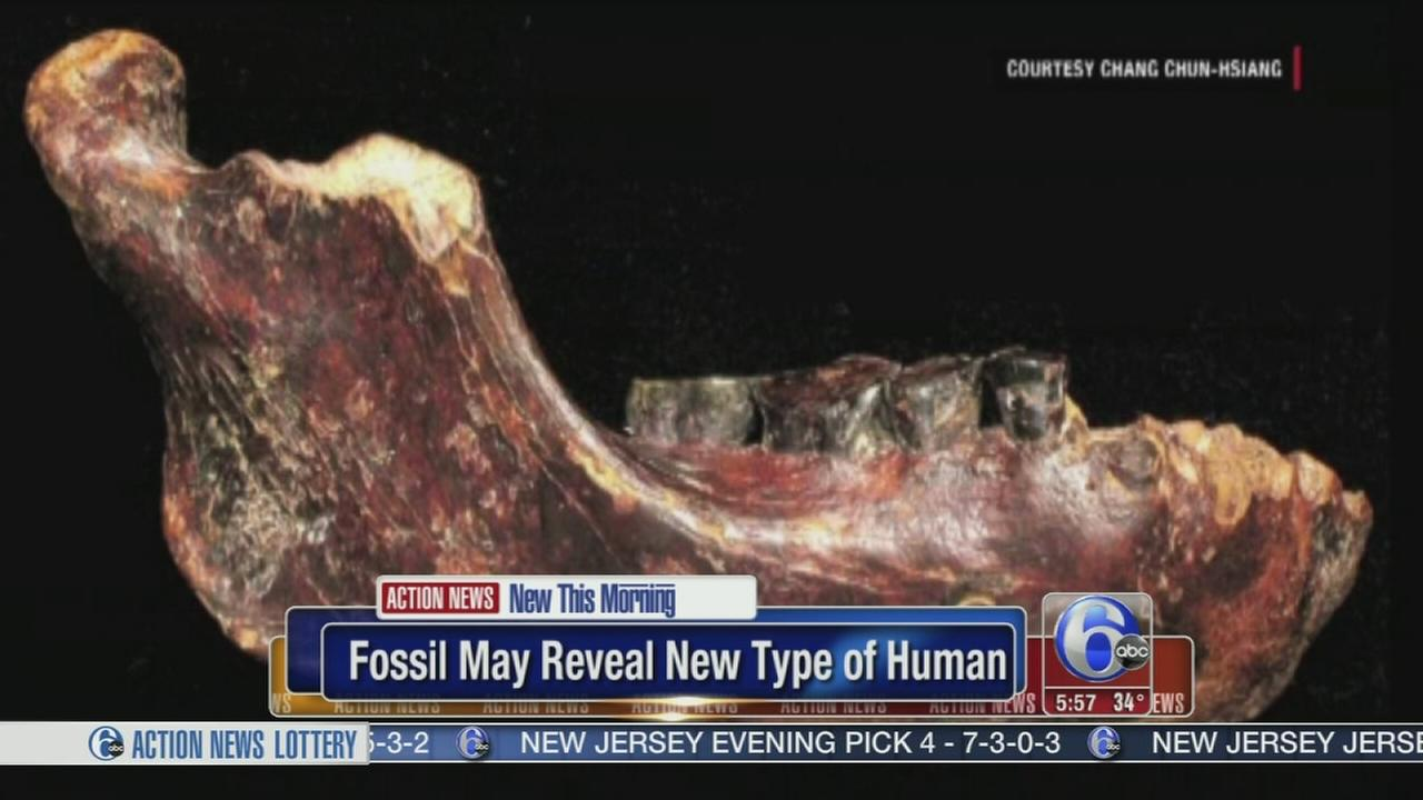 VIDEO: Fossil reveals new type of human