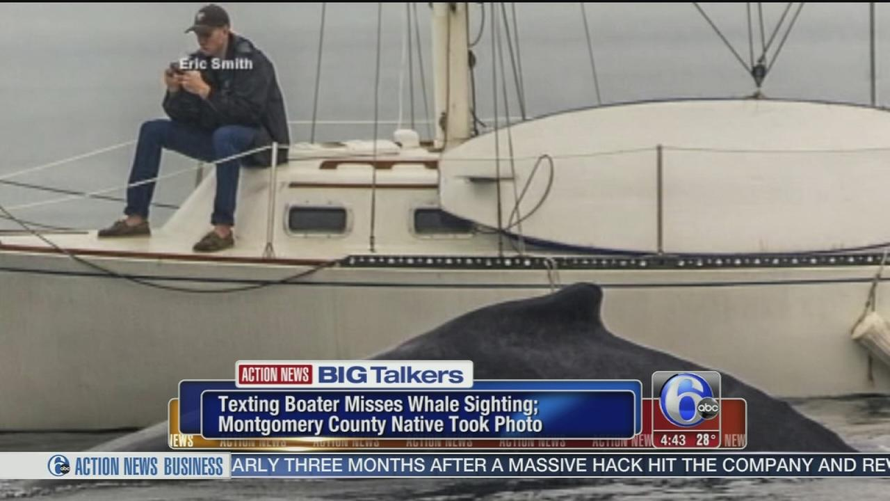 VIDEO: Texting boater misses humpback whale