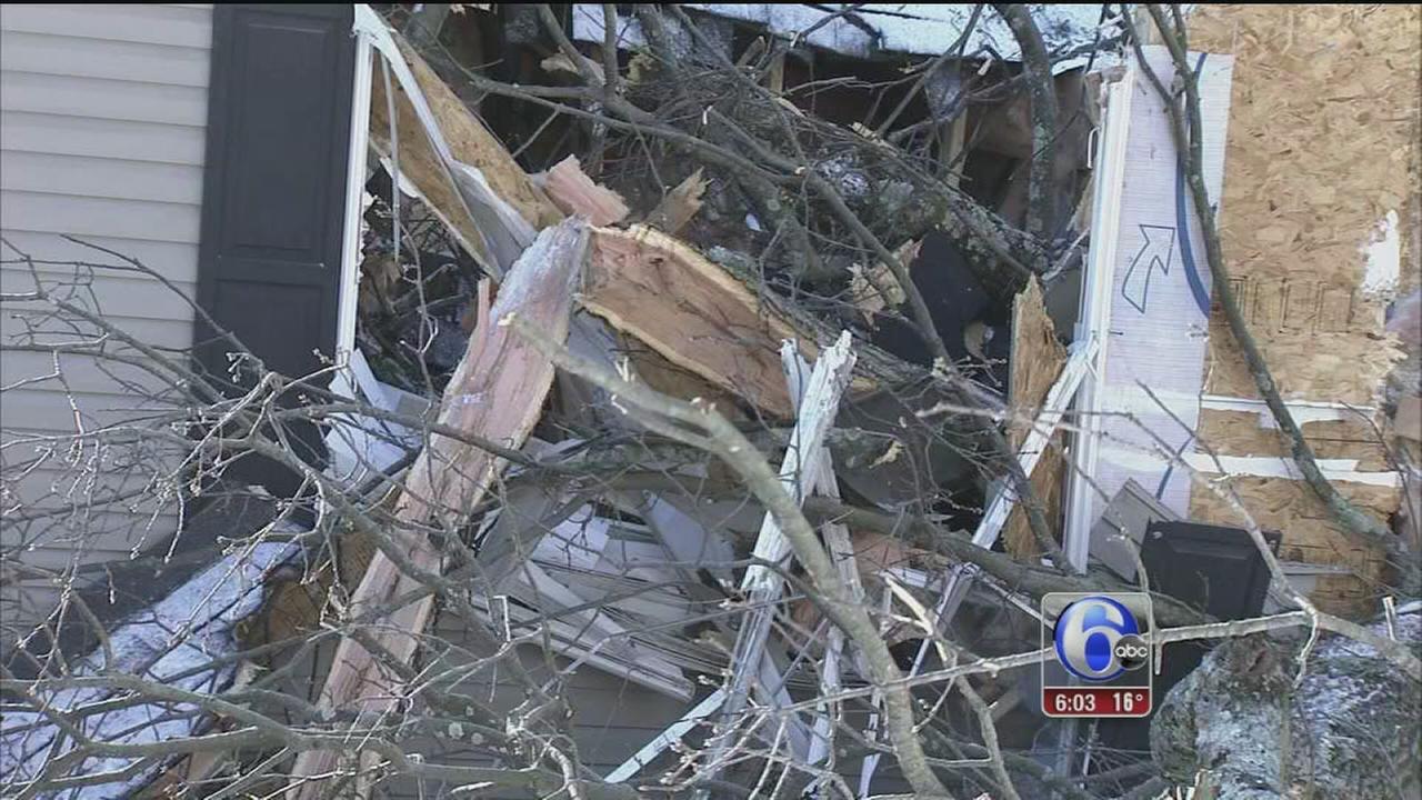 VIDEO: Giant oak tree crashes onto Newton Square home
