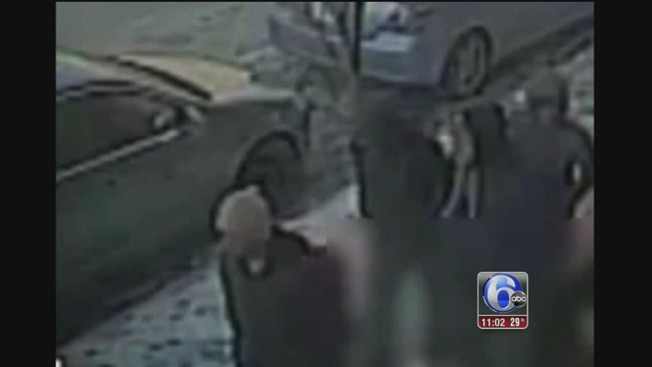 VIDEO: Group of teens sought in string of Spring Garden robberies