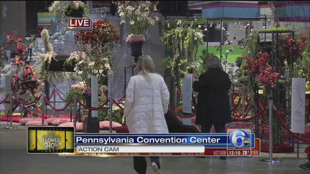 VIDEO: Counting down to the flower show