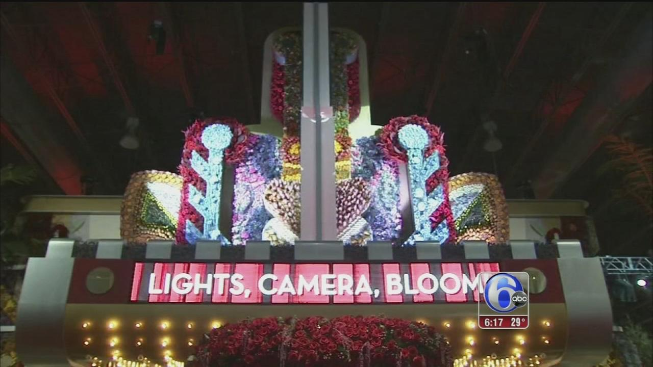 VIDEO: Light, Camera, Bloom at the Flower Show