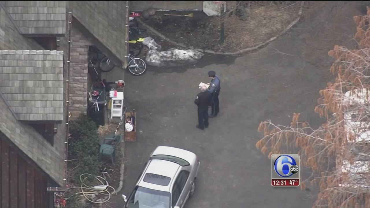 VIDEO: Investigation continues into chainsaw deaths