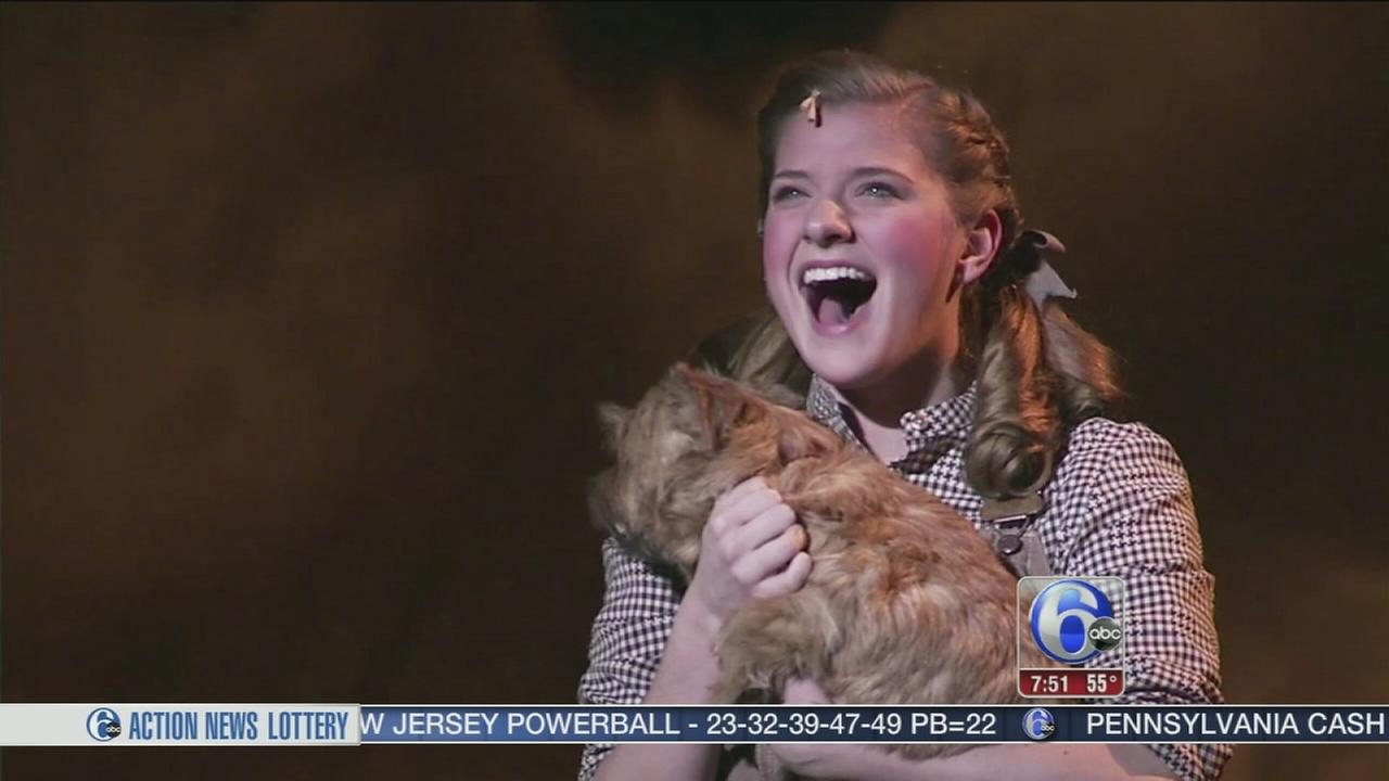 VIDEO: 6abc Loves the Arts: Wizard of Oz