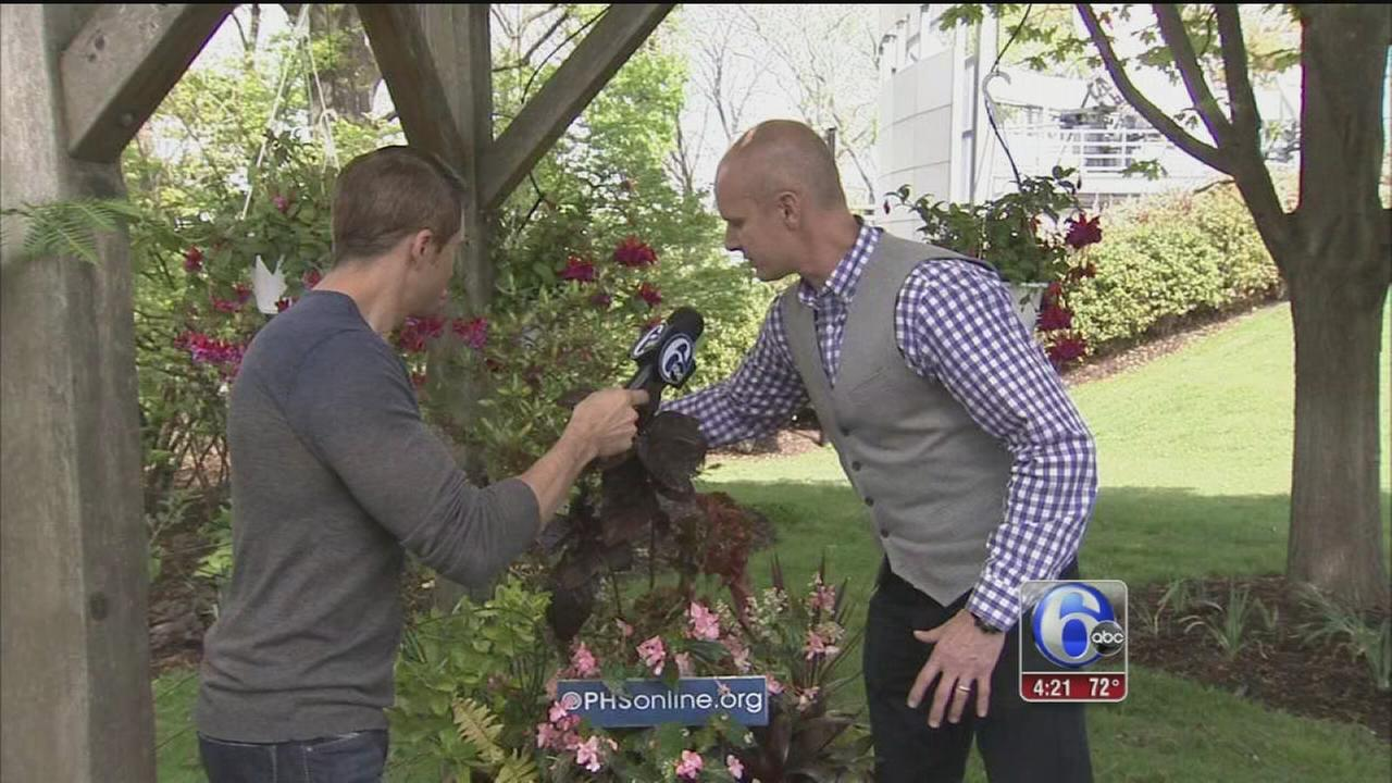 VIDEO: Spring gardening tips from Pa. Horticultural Society