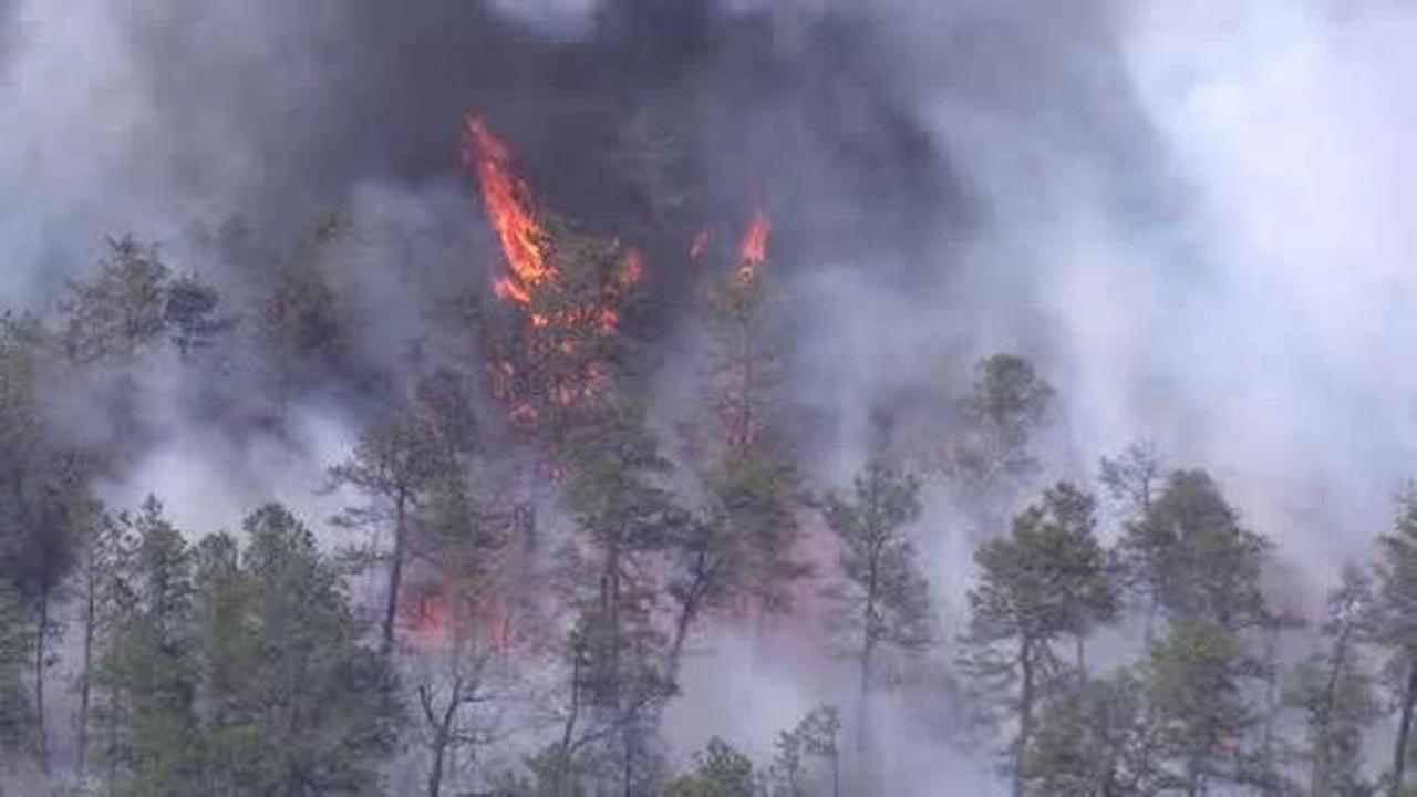 PHOTOS: Wildfire in Shamong, N.J.