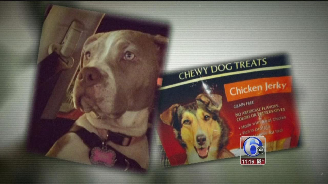 VIDEO: Investigation: Pet owners blame treats for dog deaths