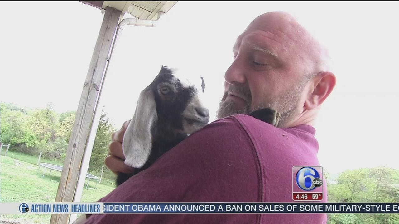 VIDEO: Couple leaves corporate lives behind, buys farm