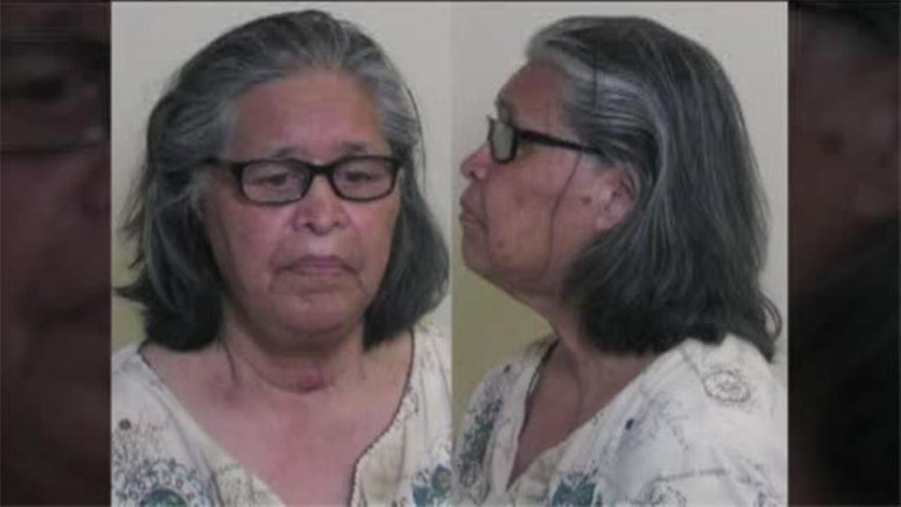 Grandmother accused of killing pets