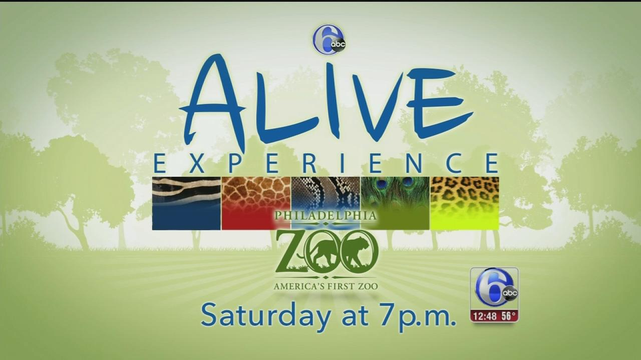 VIDEO: Zoo Alive Experience