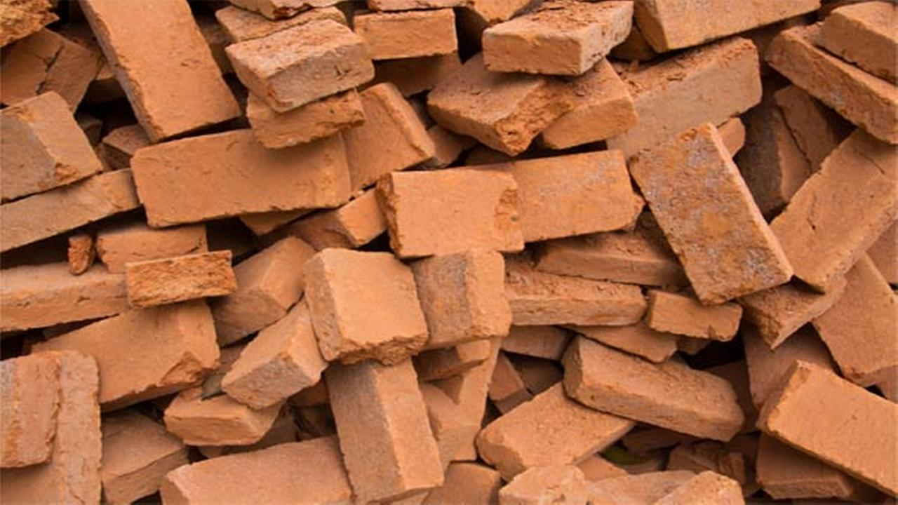 Twins charged with hurling bricks at each other
