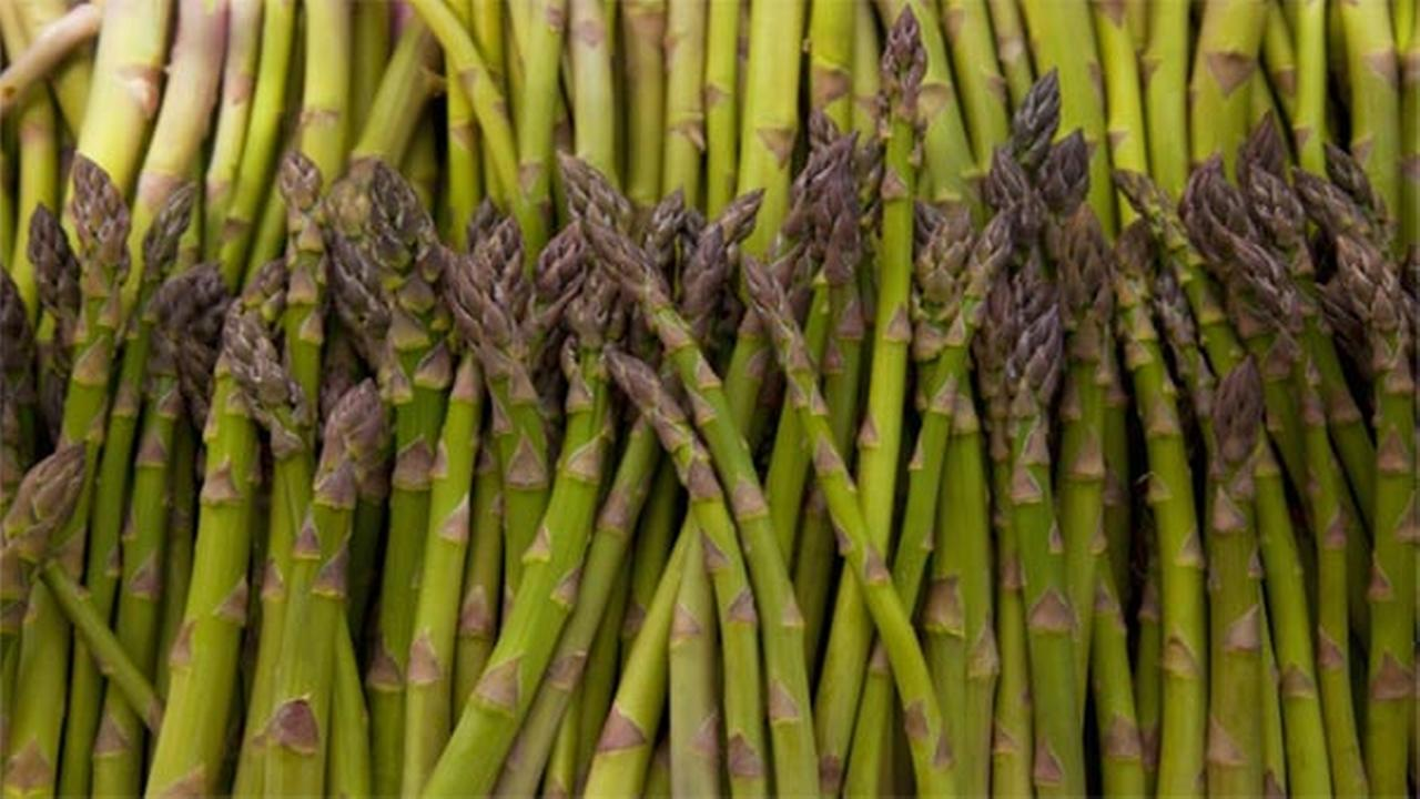 Police alerted to armed mob, find asparagus pickers