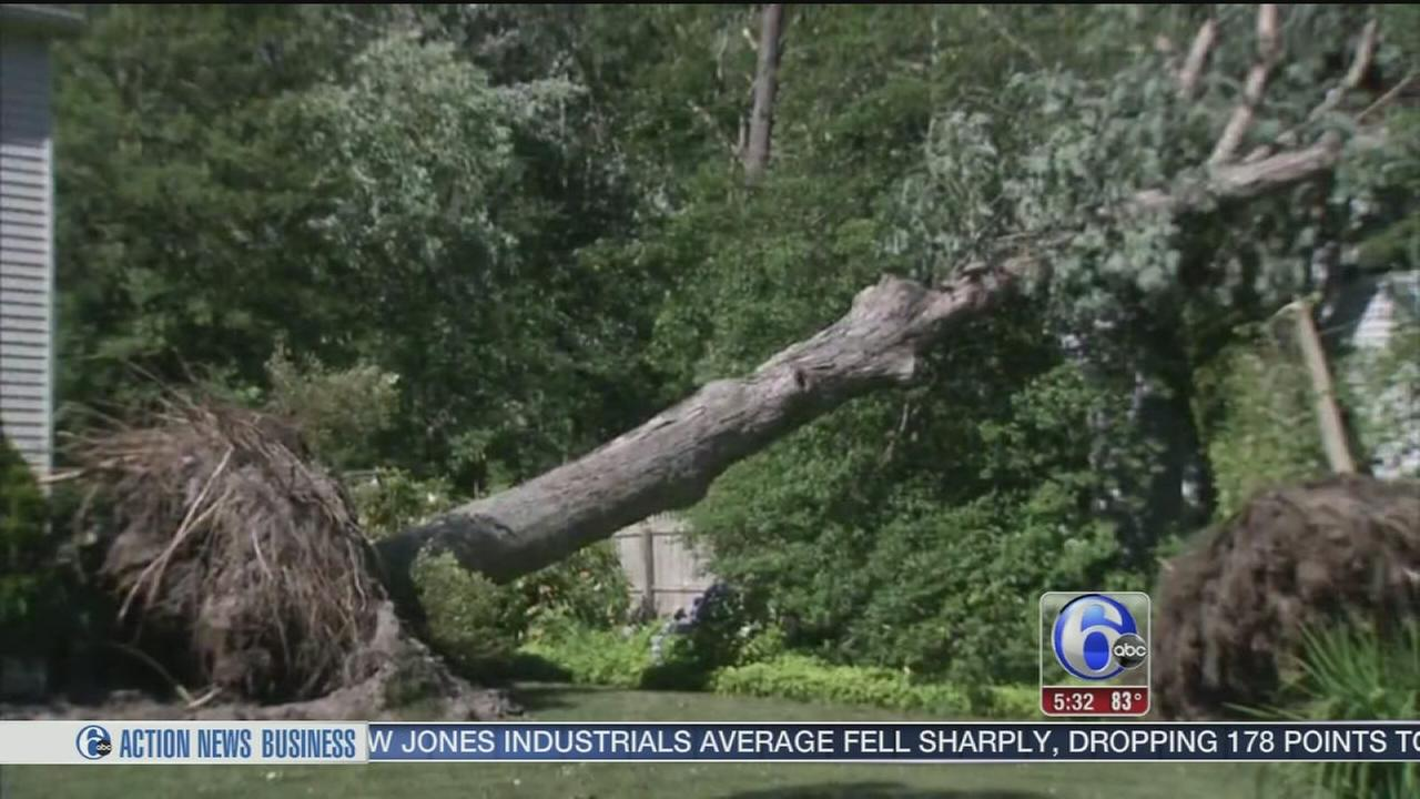 VIDEO: Medford residents picking up the pieces after storm