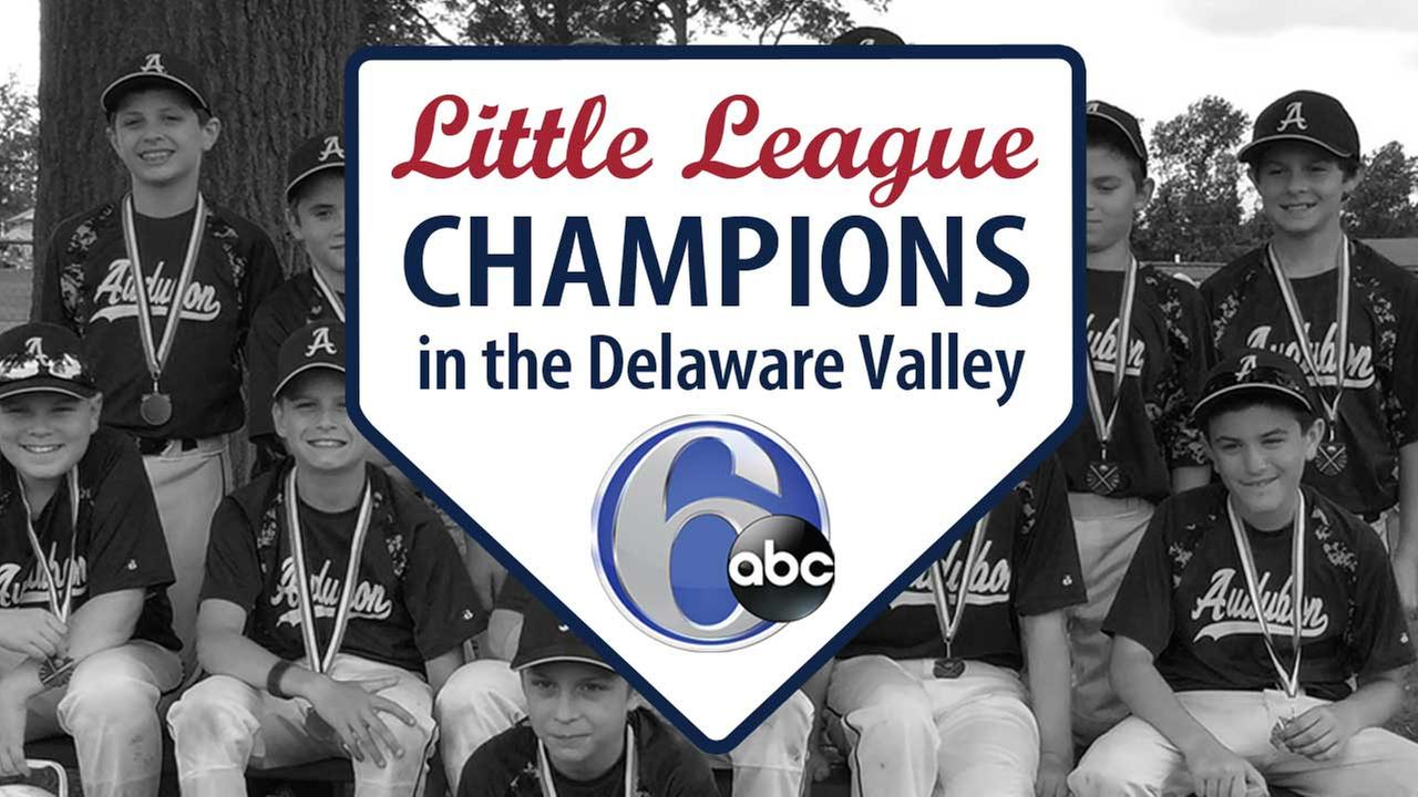 2015 Little League Champions in the Delaware Valley