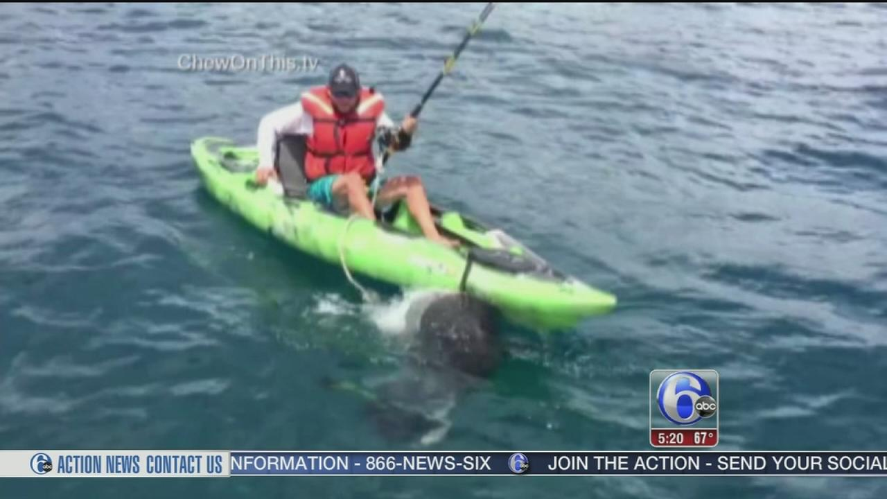 VIDEO: Shark capsizes mans kayak in Florida