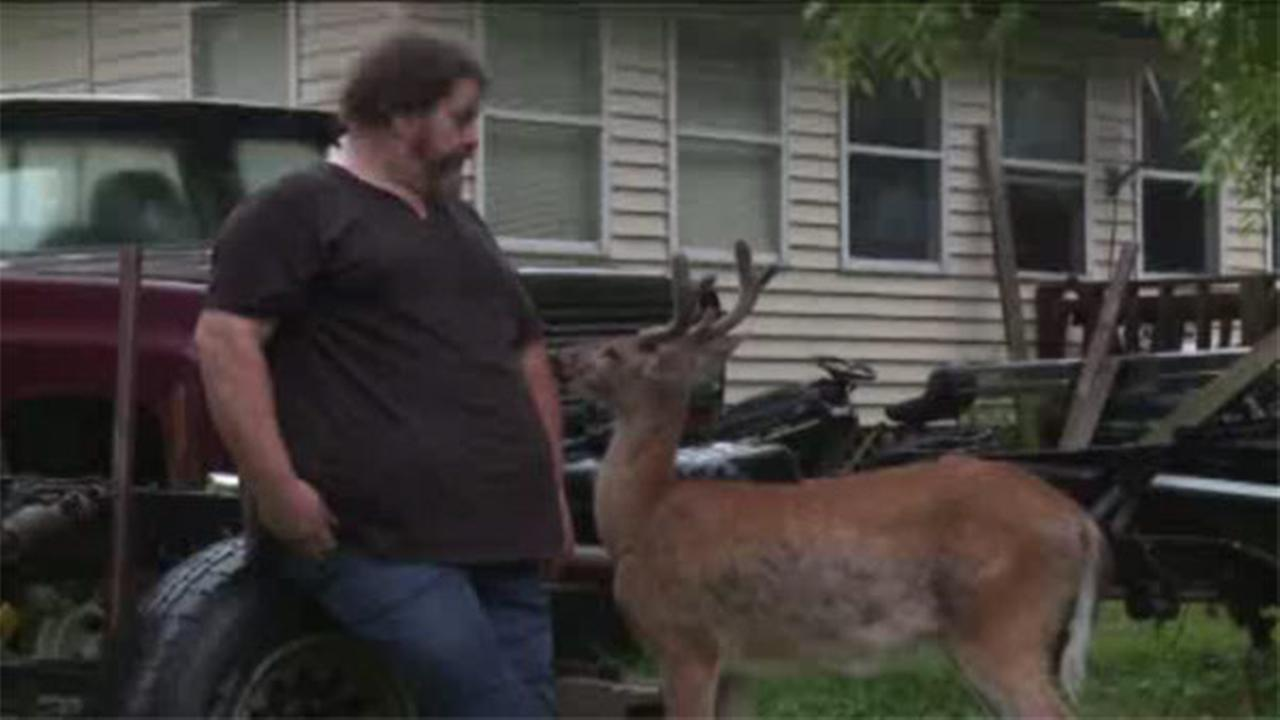 Man accused of allowing deer to live in home