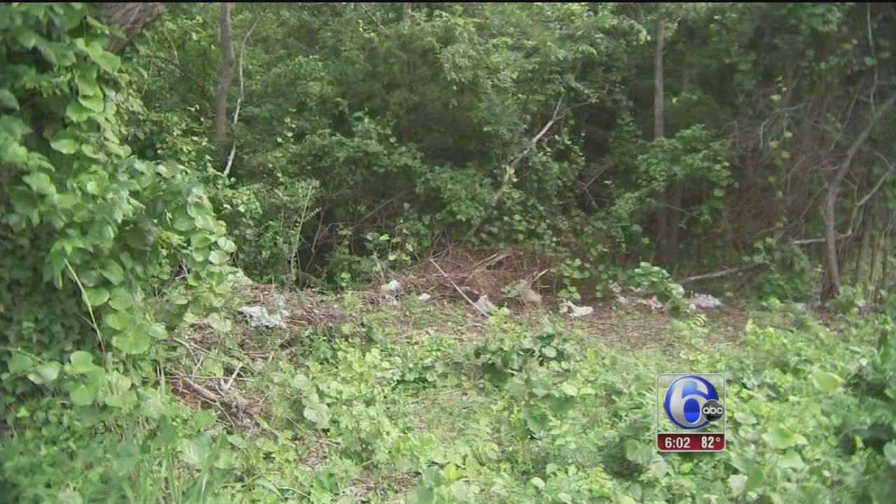 VIDEO: 2 bodies found in Cape May County
