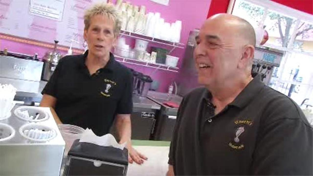 Art of  Aging: Vincents Homemade Ice Cream