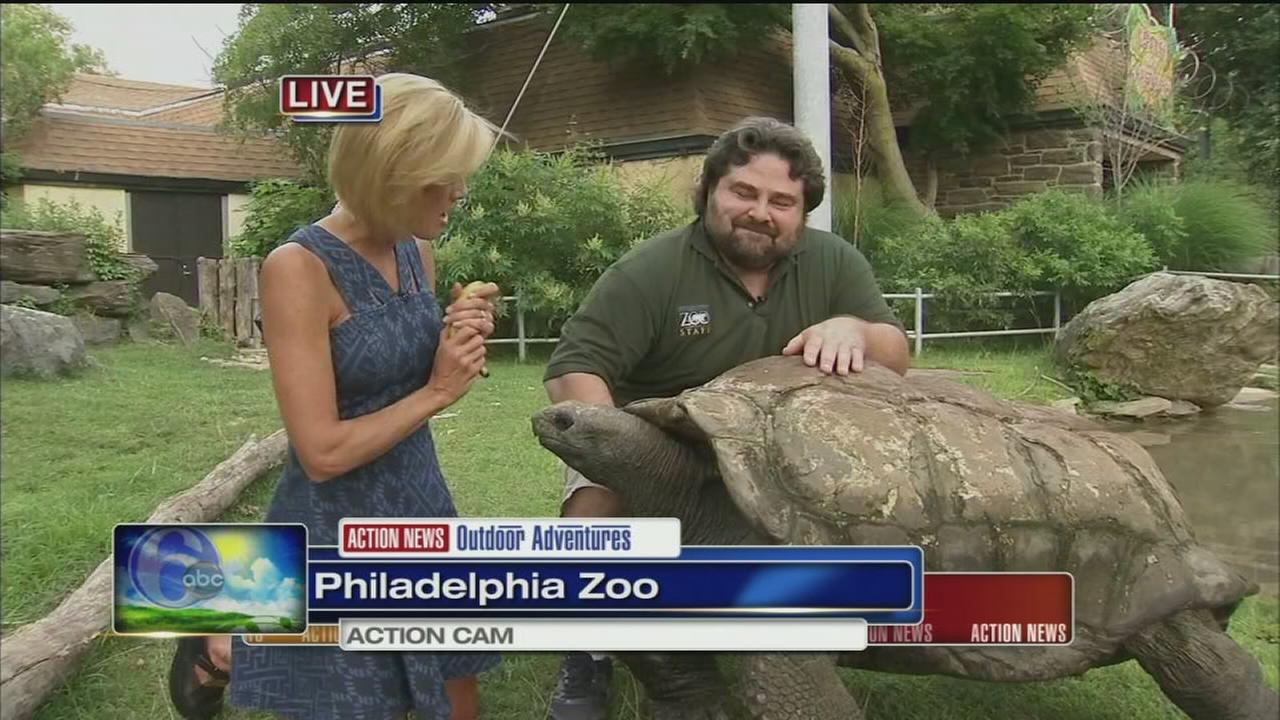 VIDEO: Cecily Tynan at the Zoo with Bubba