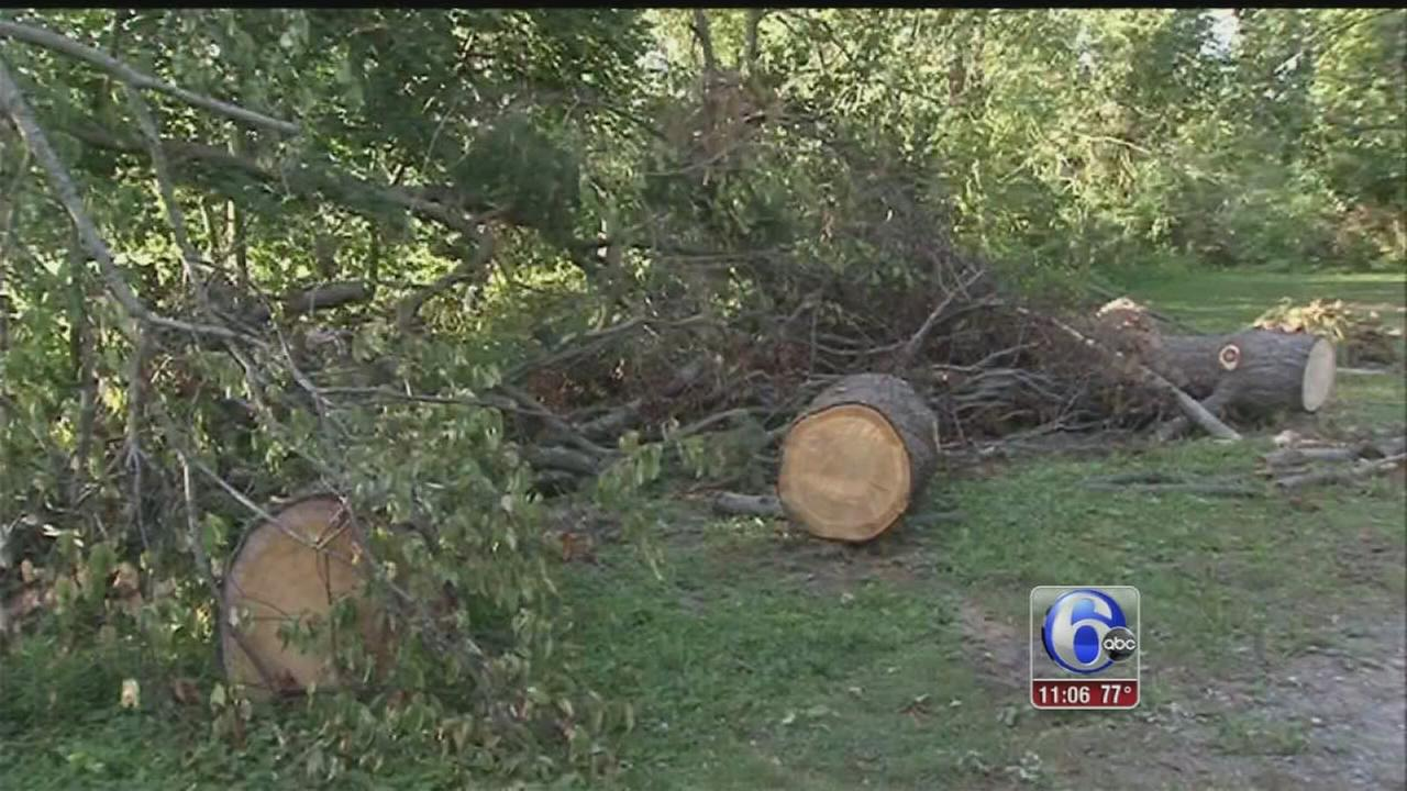 VIDEO: Disaster declaration approved after South Jersey storms