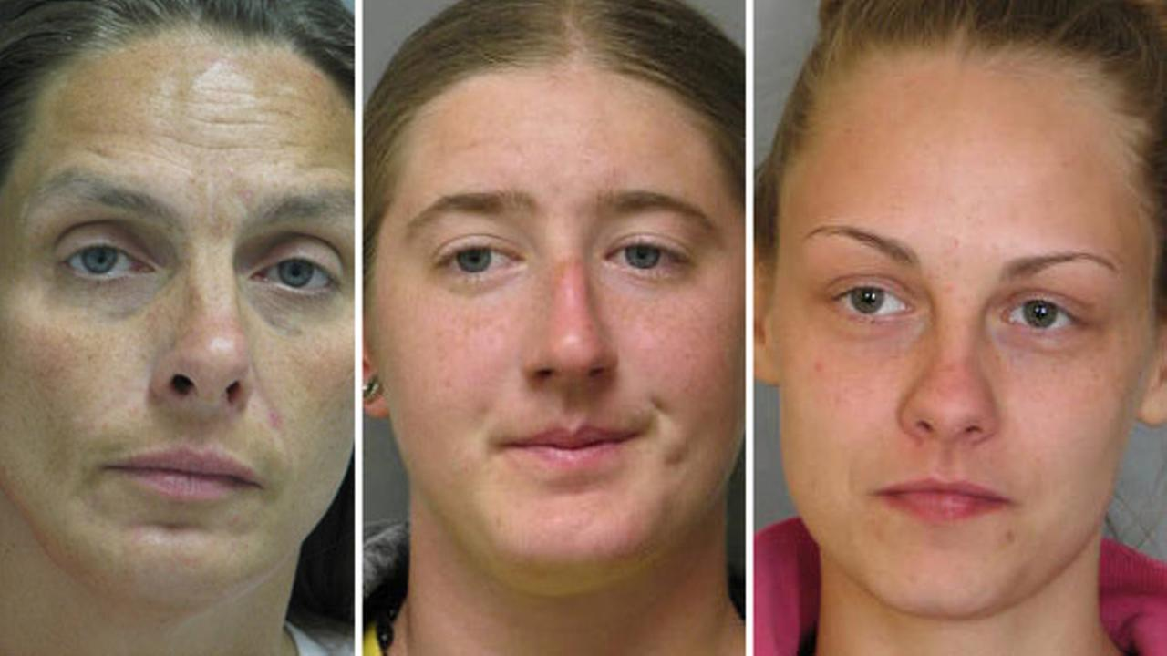3 women arrested after purse snatching in Prices Corner