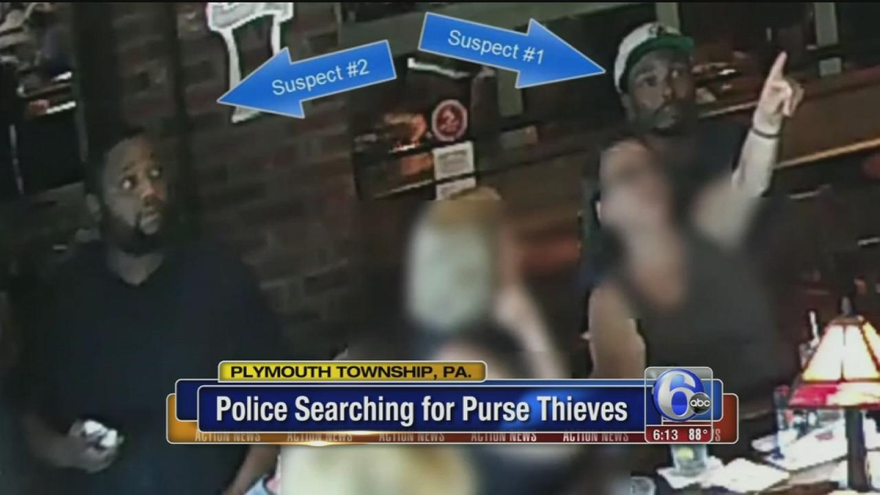 VIDEO: Police search for purse thieves