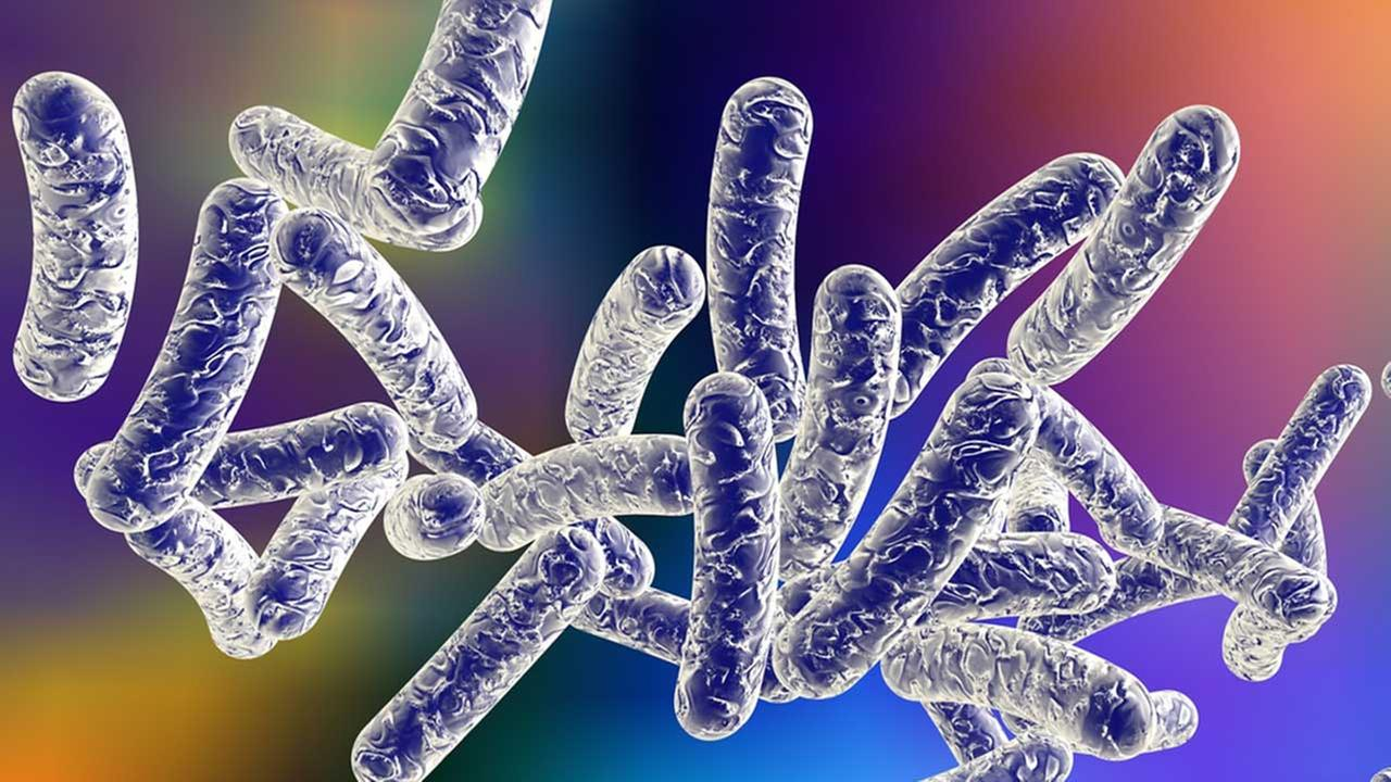 how to avoid legionnaires disease