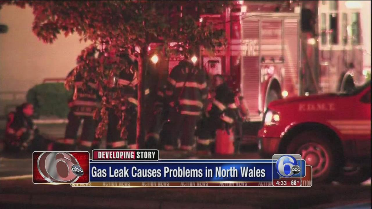 VIDEO: Gas leak shuts down Montgomery Twp. grocery store