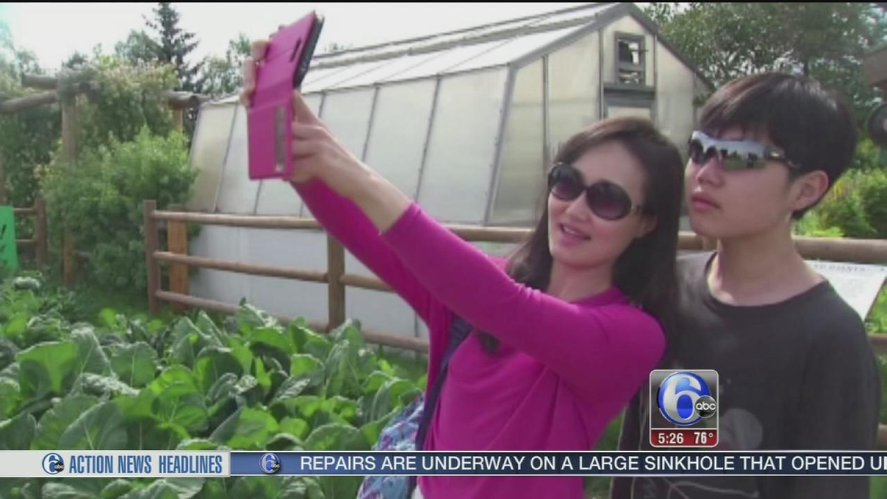 VIDEO: Professor will teach class on selfies