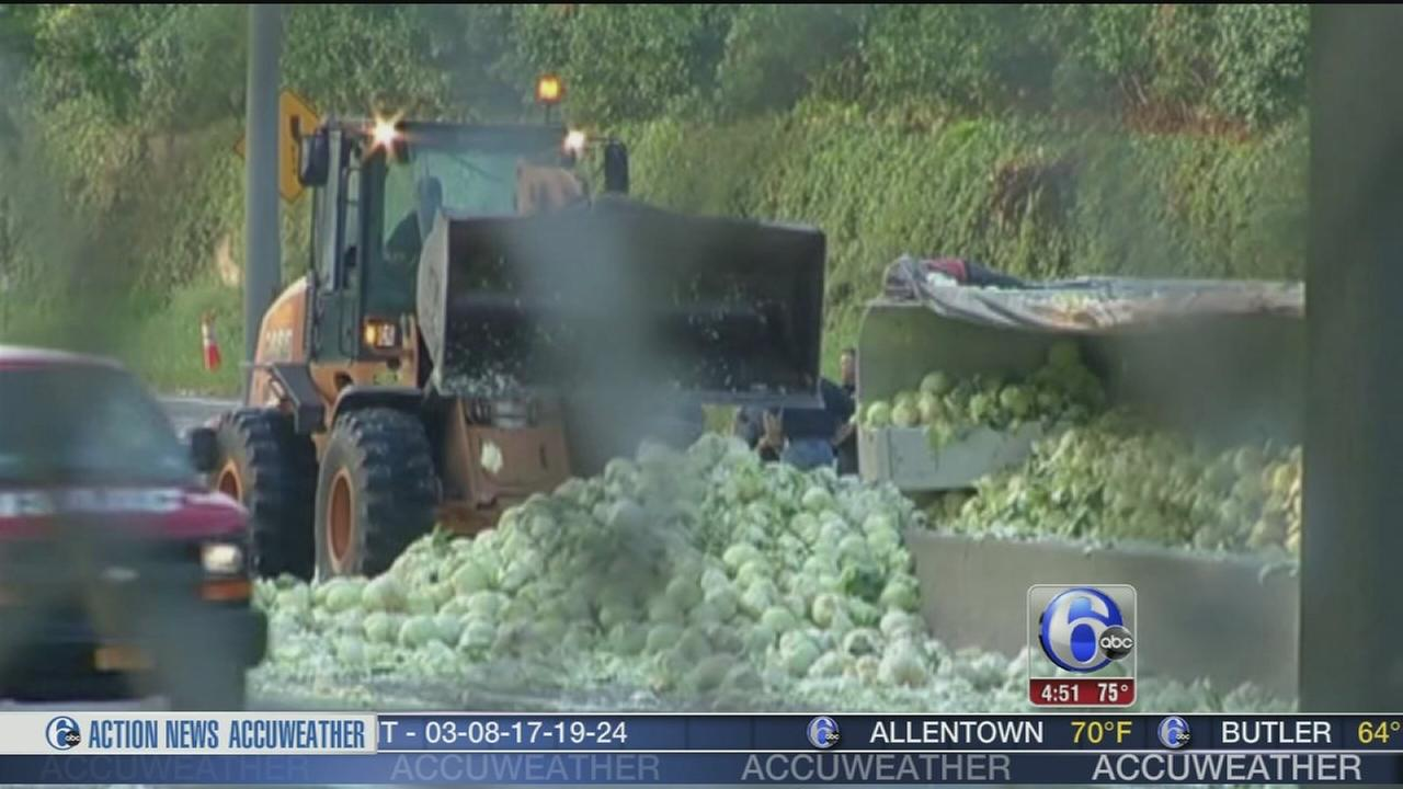 VIDEO: Thousands of cabbages litter highway in NY