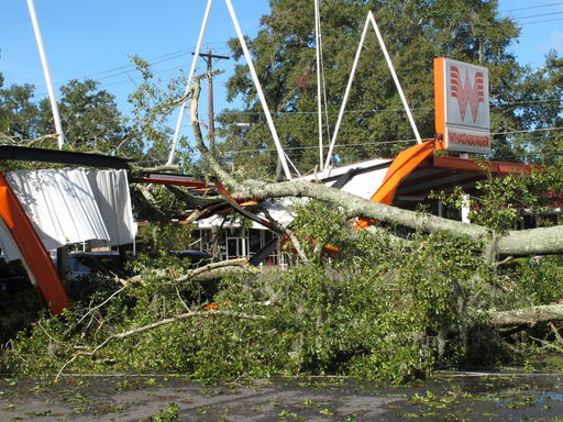 "<div class=""meta image-caption""><div class=""origin-logo origin-image ap""><span>AP</span></div><span class=""caption-text"">A large oak tree toppled over a Whataburger restaurant in Tallahassee, Fla., Sept. 2, 2016. (AP)</span></div>"