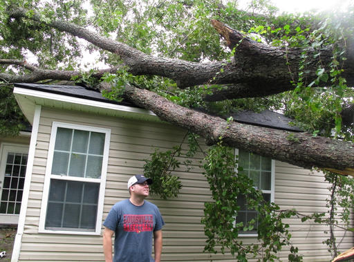 "<div class=""meta image-caption""><div class=""origin-logo origin-image none""><span>none</span></div><span class=""caption-text"">Nick Wykoff looks up at a burly pecan tree that fell on his home in Valdosta, Ga., Friday, Sept. 2, 2016. (AP)</span></div>"