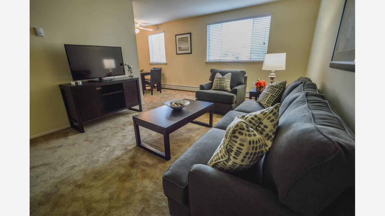 The Cheapest Apartment Rentals In Upper Roxborough, Explored