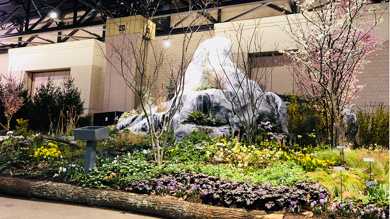 <div class='meta'><div class='origin-logo' data-origin='none'></div><span class='caption-text' data-credit=''>The flowers are in full bloom at the Philadelphia Flower Show.</span></div>