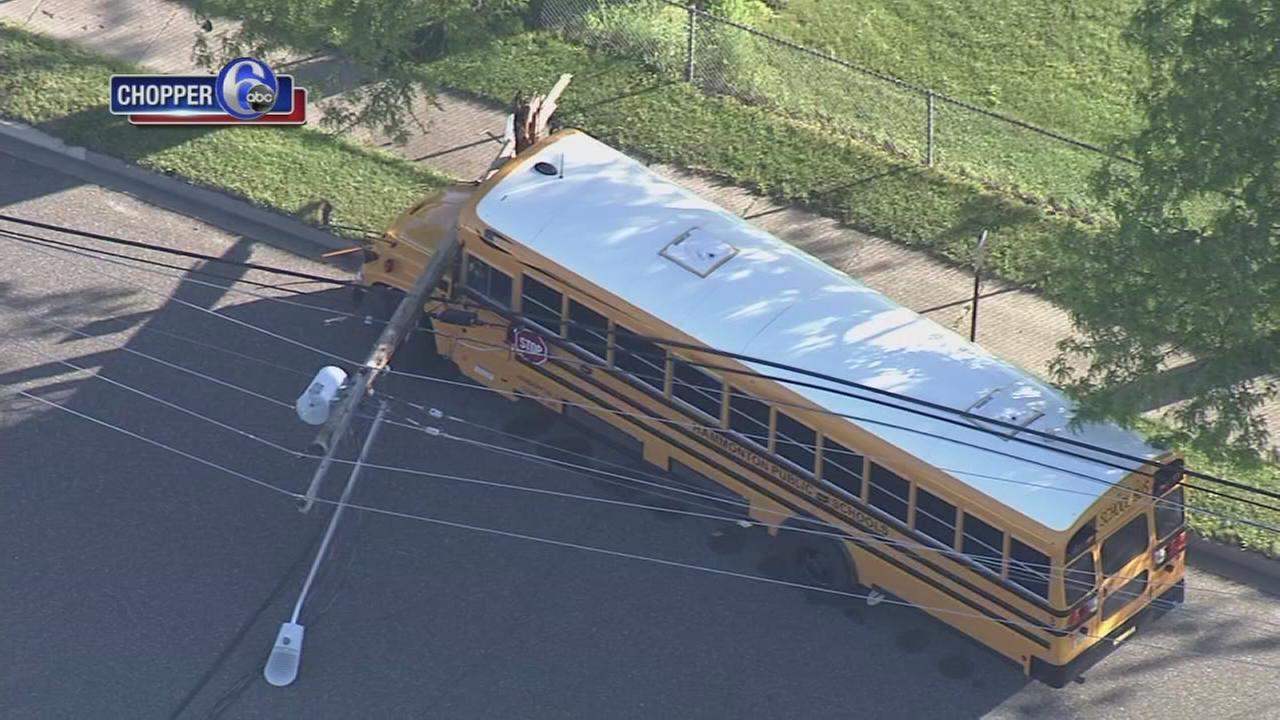 School bus hits utility pole