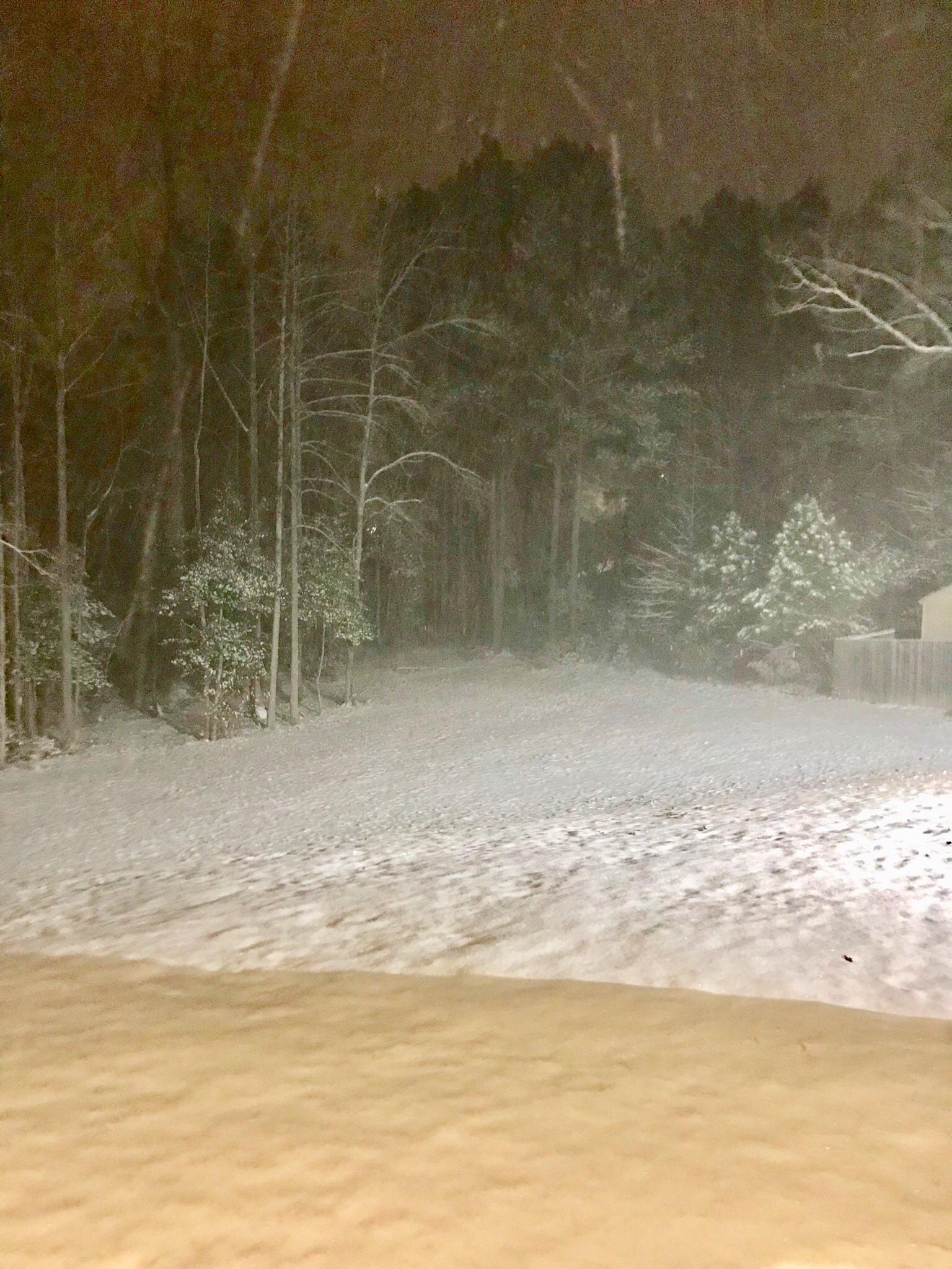 <div class='meta'><div class='origin-logo' data-origin='none'></div><span class='caption-text' data-credit='ABC11 Eyewitness'>Snow in Raeford</span></div>