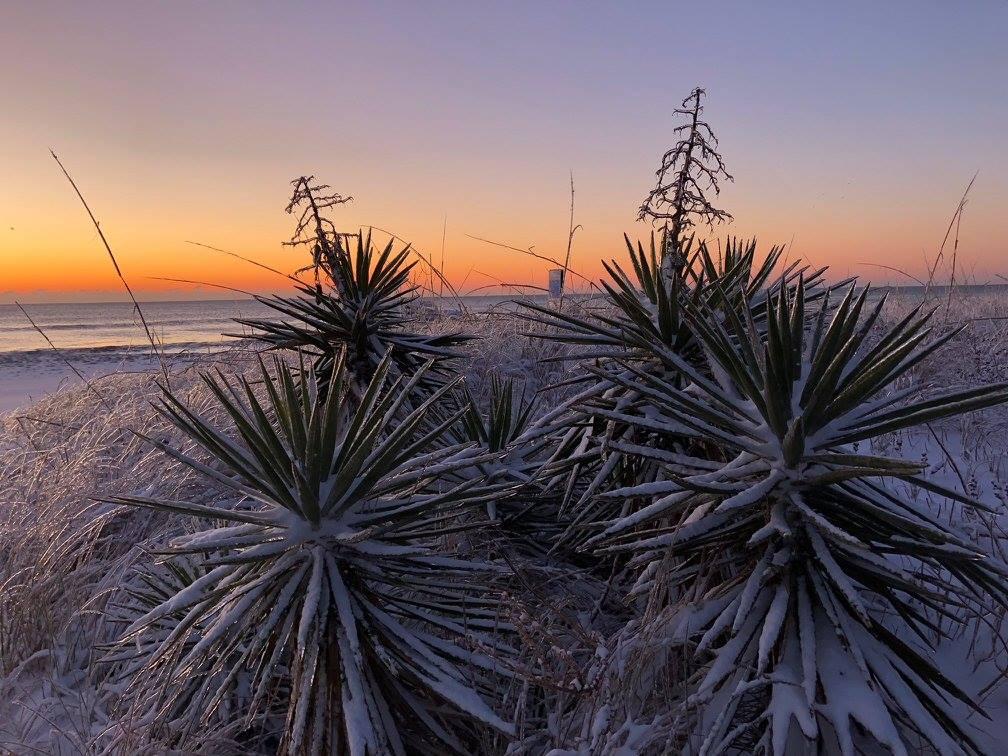 "<div class=""meta image-caption""><div class=""origin-logo origin-image none""><span>none</span></div><span class=""caption-text"">Snow at the North Carolina coast (WWAY/Blockade Runner Beach Resort -- Wrightsville Beach)</span></div>"
