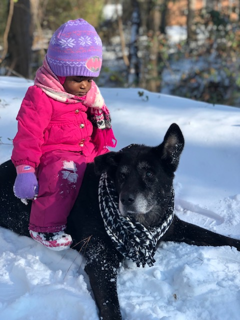 <div class='meta'><div class='origin-logo' data-origin='none'></div><span class='caption-text' data-credit='Joy Coley - ABC11 Eyewitness'>Londyn Webb and Pookie enjoying snow.</span></div>