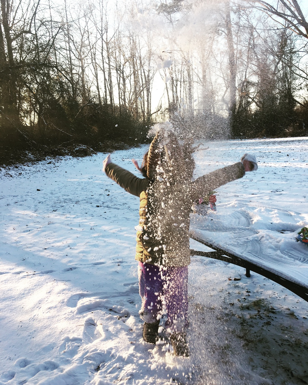 <div class='meta'><div class='origin-logo' data-origin='none'></div><span class='caption-text' data-credit='Fantasia Evans - ABC11 Eyewitness'>Mila playing in the snow!</span></div>